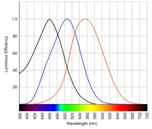 ipRGC (black), rod (blue), and cone (red) sensitivity curves
